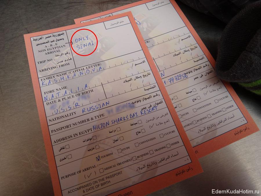 образец заполнения анкеты для египетской визы