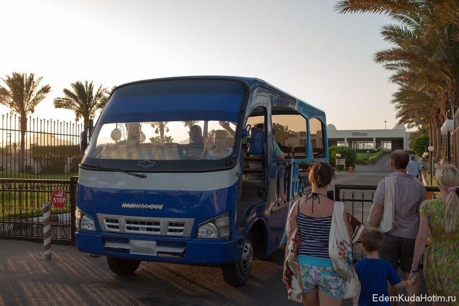 автобус в хилтоне