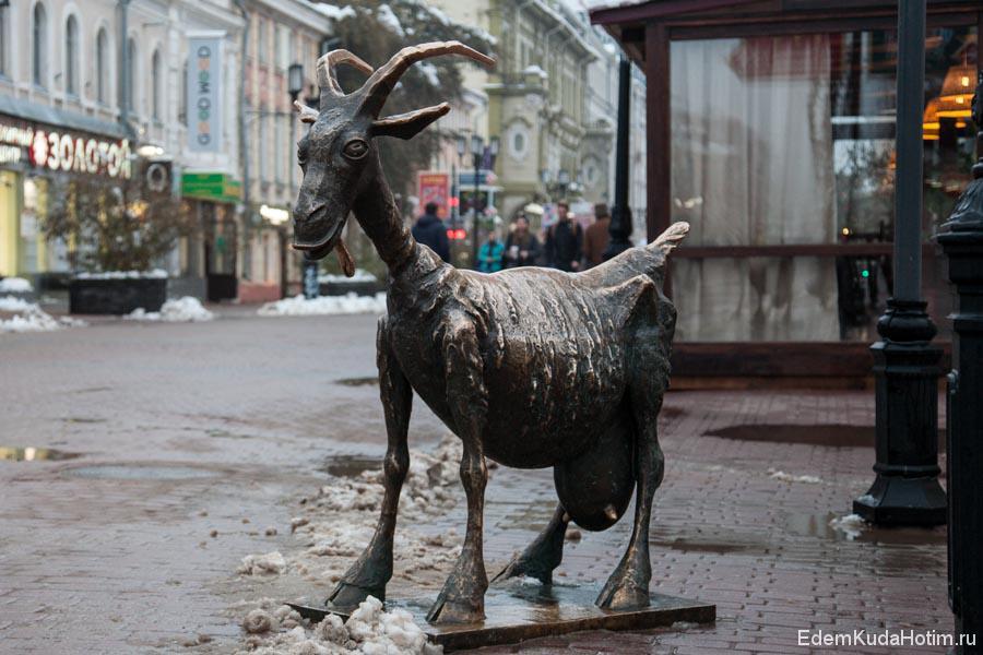 У козы забавное и даже нагловатое выражение морды!