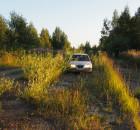 Трава обильно прорастает сквозь стыки бетонки